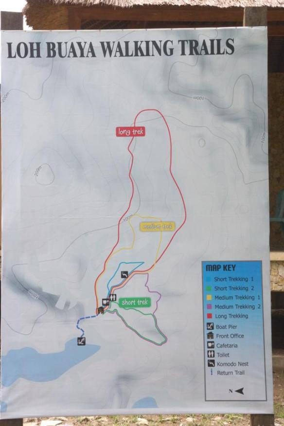 9 Pilihan track