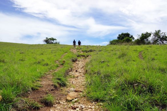 Long track 2