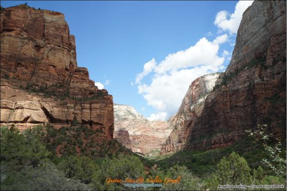Angels Landing - Going Down 21