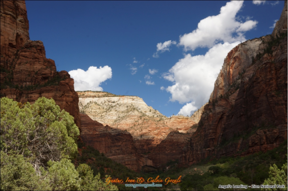 Angels Landing - Going Down 24
