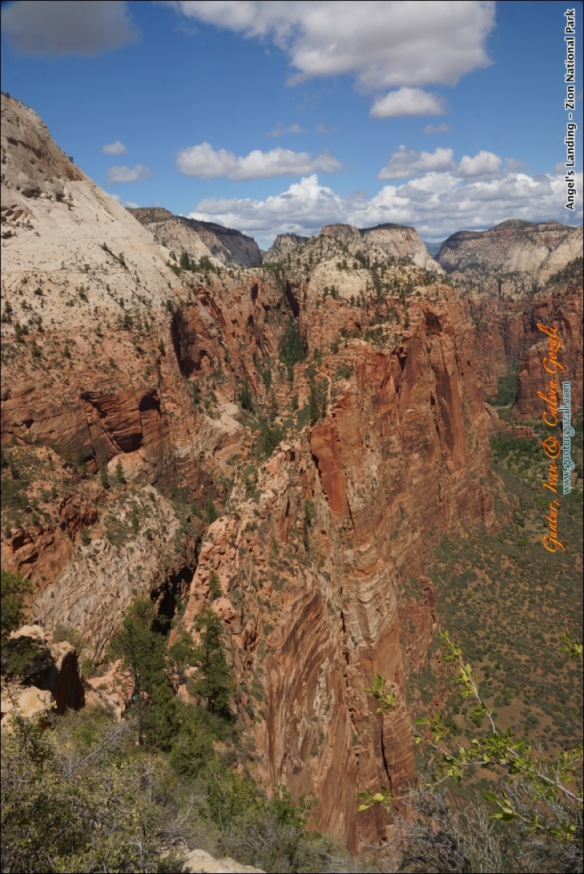 Angels Landing - Going Down 5