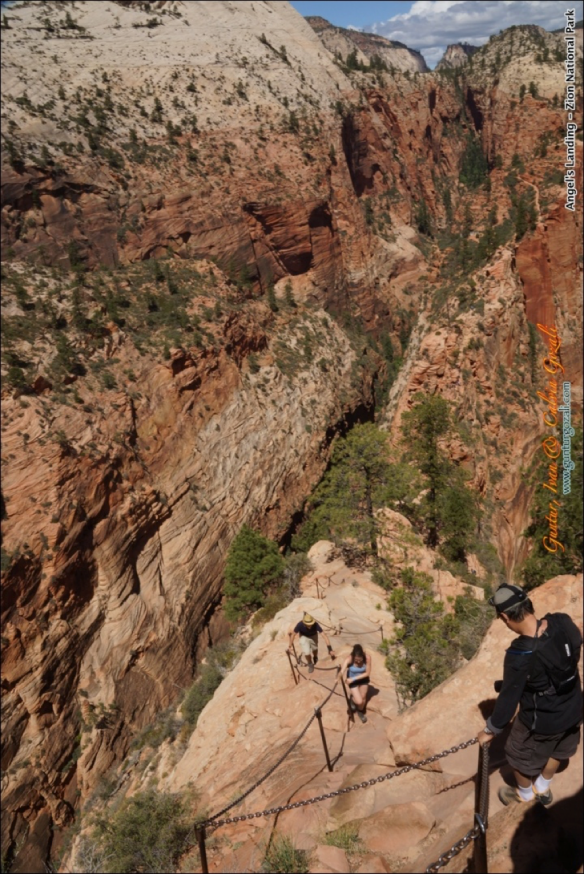 Angels Landing - Going Down 6