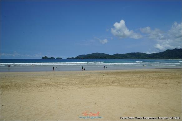 Pantai Pulau Merah 10