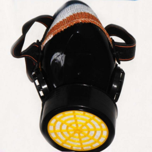 Single Filter Mask